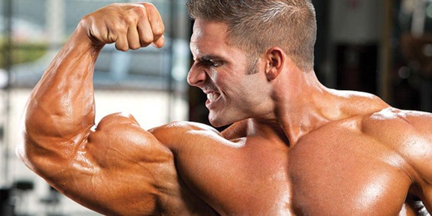 Anabolic Hormone